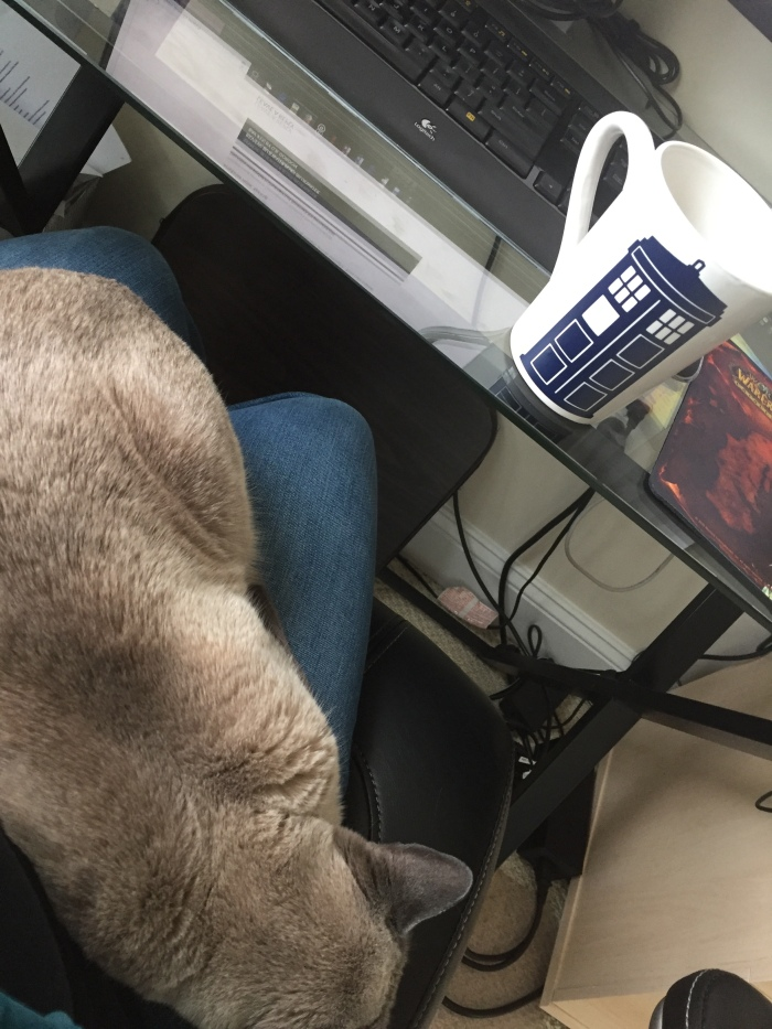 coffee and cat
