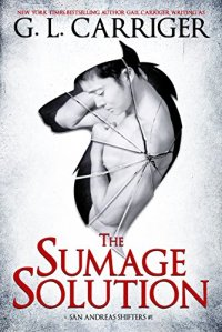 Sumage Solution